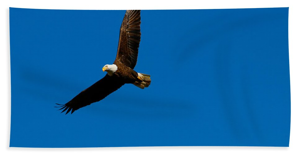 Beach Towel featuring the photograph Banking by Tony Umana