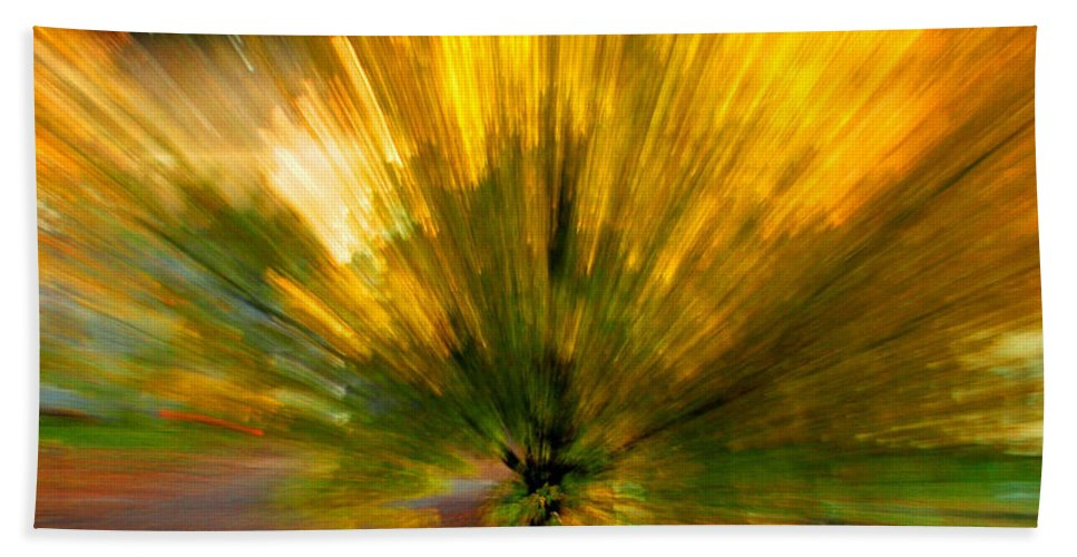Nature Beach Towel featuring the photograph Color explosion by Linda Sannuti