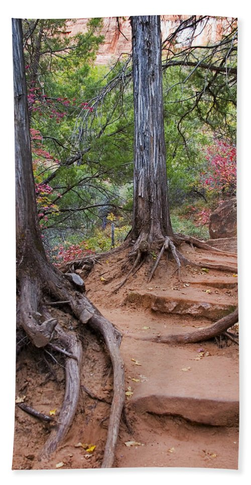 3scape Beach Towel featuring the photograph Colors of Zion by Adam Romanowicz