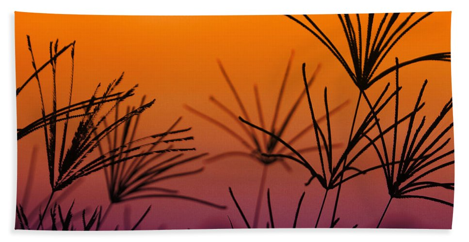 Nature Beach Towel featuring the photograph I Love a Sunburnt Country by Holly Kempe