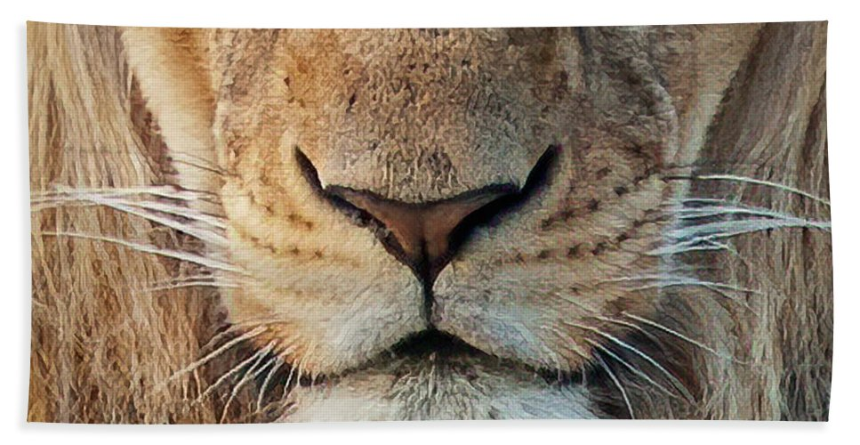 Lion Beach Towel featuring the photograph Lion by Steven Sparks