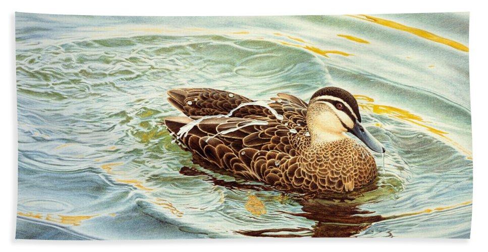 Watercolour Birds Beach Towel featuring the painting Splash - Pacific Black Duck by Frances McMahon