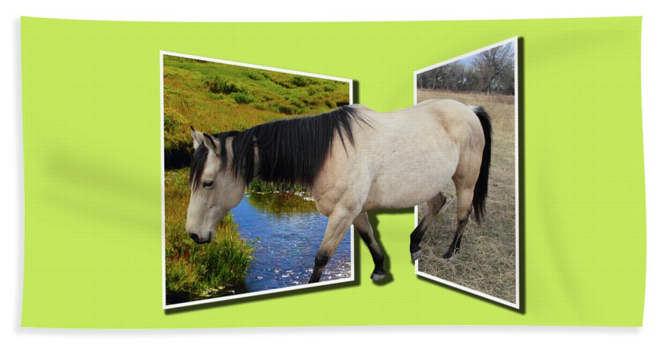 Horse Beach Towel featuring the photograph The Grass Is Always Greener On The Other Side by Shane Bechler