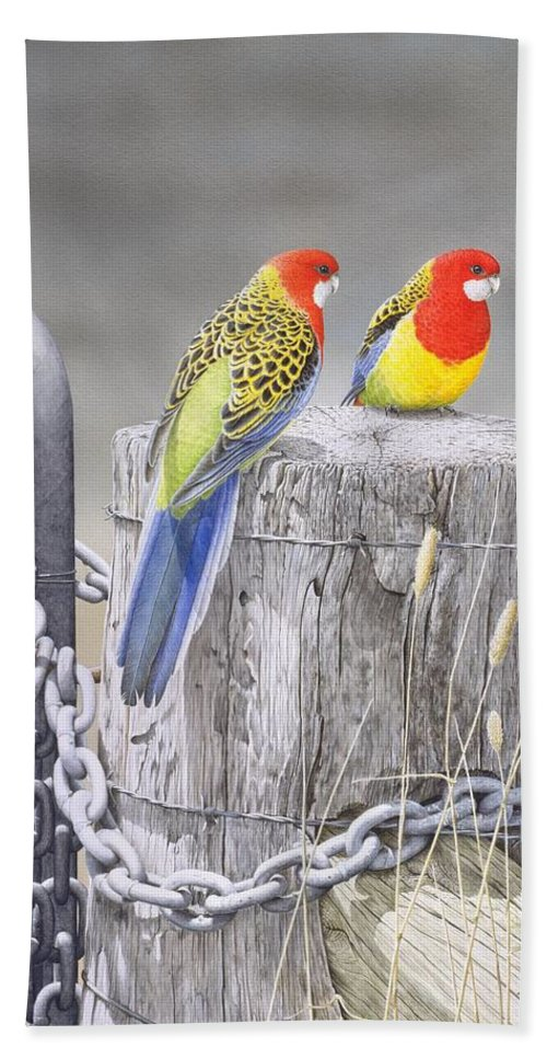 Bird Beach Towel featuring the painting Waiting for the Rains - Eastern Rosellas by Frances McMahon
