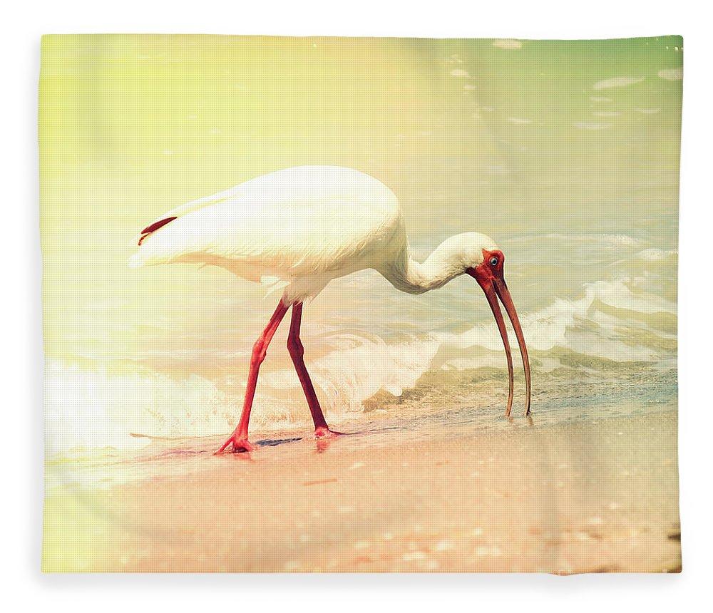 Florida Fleece Blanket featuring the photograph Bird Breakfast by Chris Andruskiewicz