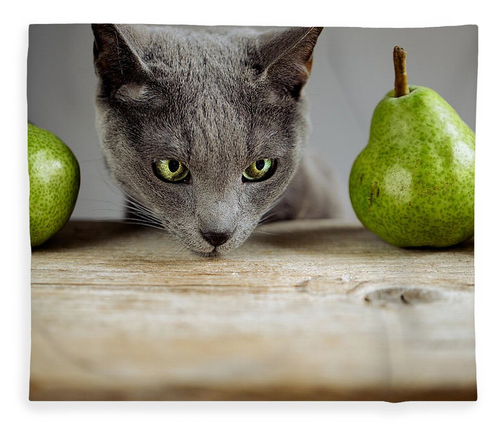 Cat Fleece Blanket featuring the photograph Cat And Pears by Nailia Schwarz