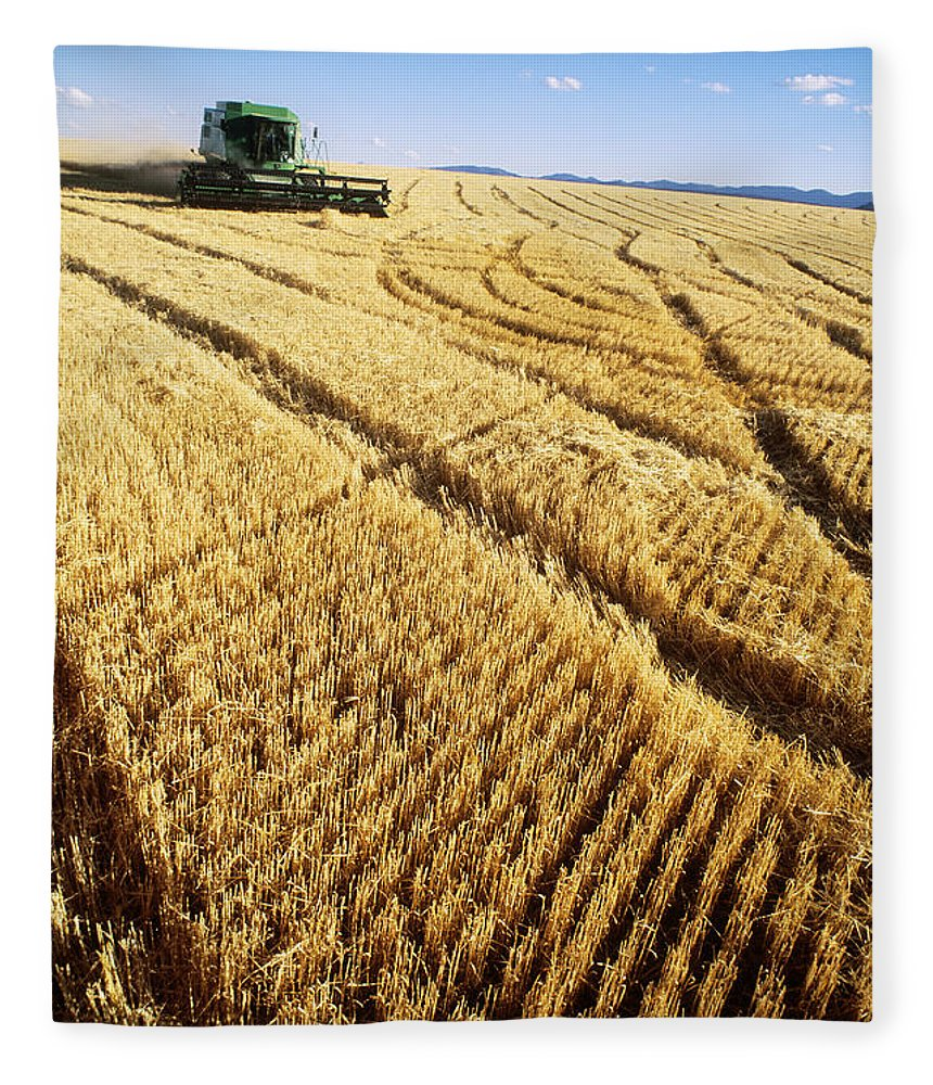 Barley Fleece Blanket featuring the photograph Combine And Barley by William H. Mullins