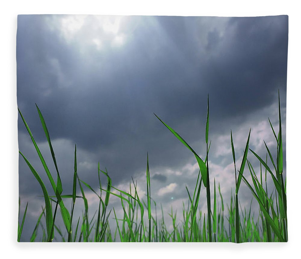Thunderstorm Fleece Blanket featuring the photograph Corn Plant With Thunderstorm Clouds by Silvia Otte