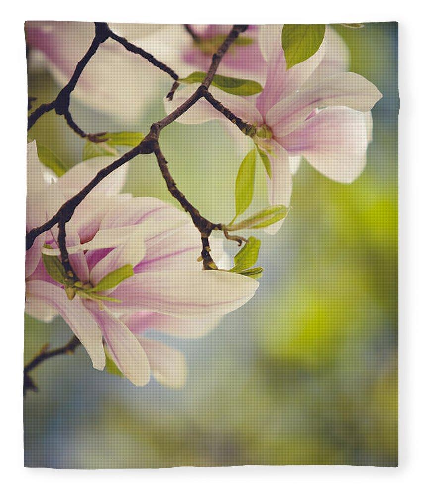 Magnolia Fleece Blanket featuring the photograph Magnolia Flowers by Nailia Schwarz