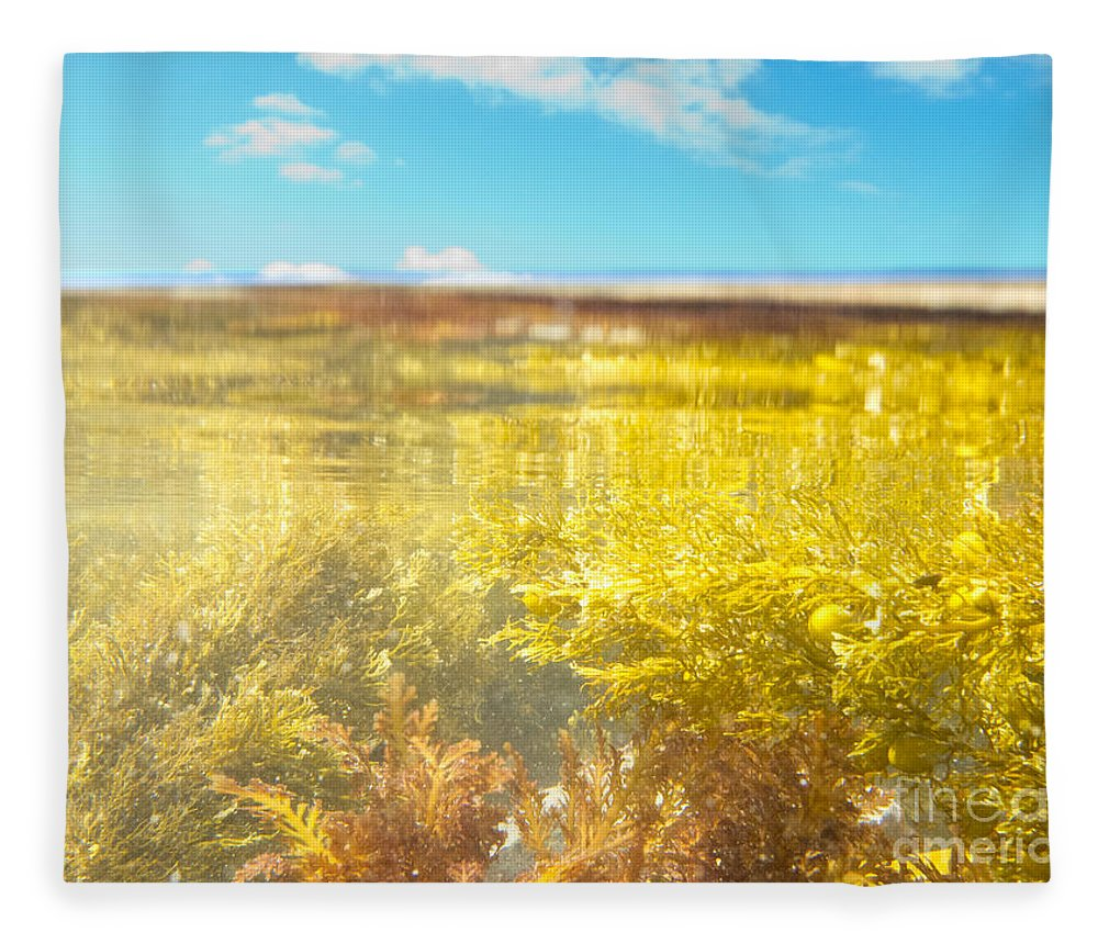 Above Fleece Blanket featuring the photograph Over-under Split Shot Of Clear Water In Tidal Pool by Stephan Pietzko