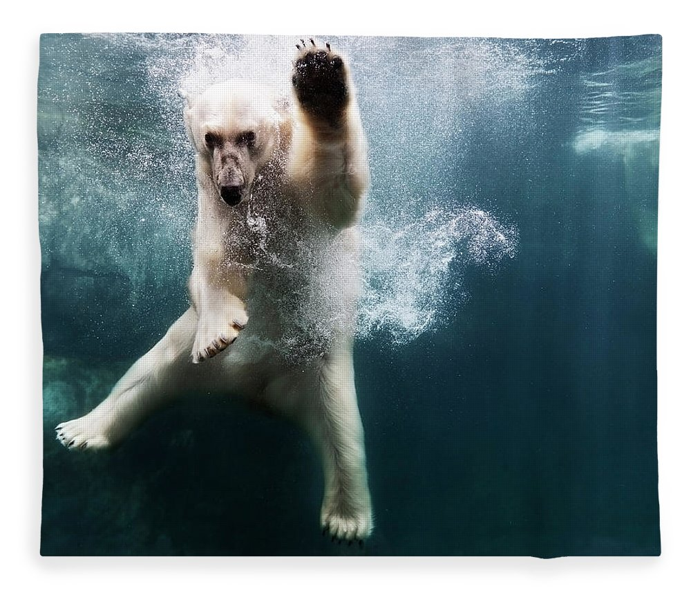 Diving Into Water Fleece Blanket featuring the photograph Polarbear In Water by Henrik Sorensen