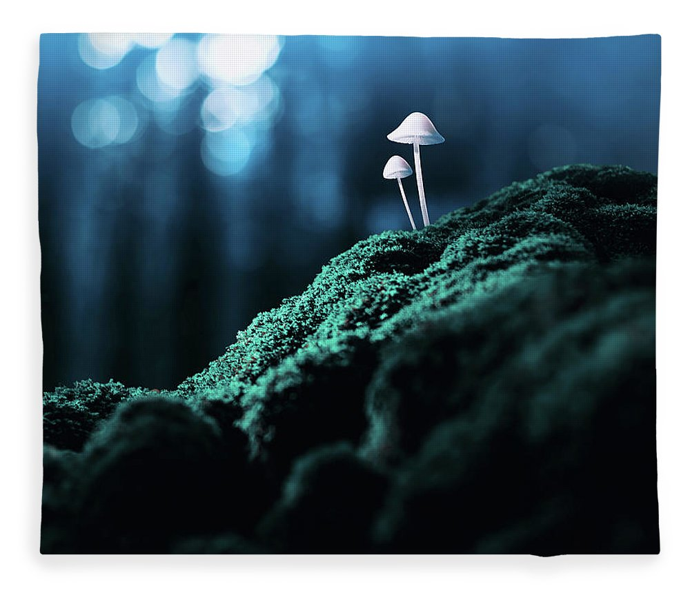 Scenics Fleece Blanket featuring the photograph Psychedelic Mushrooms by Misha Kaminsky