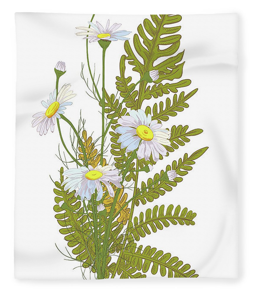 Flowerbed Fleece Blanket featuring the digital art Set Of Chamomile Daisy Bouquets White by Olga Ivanova