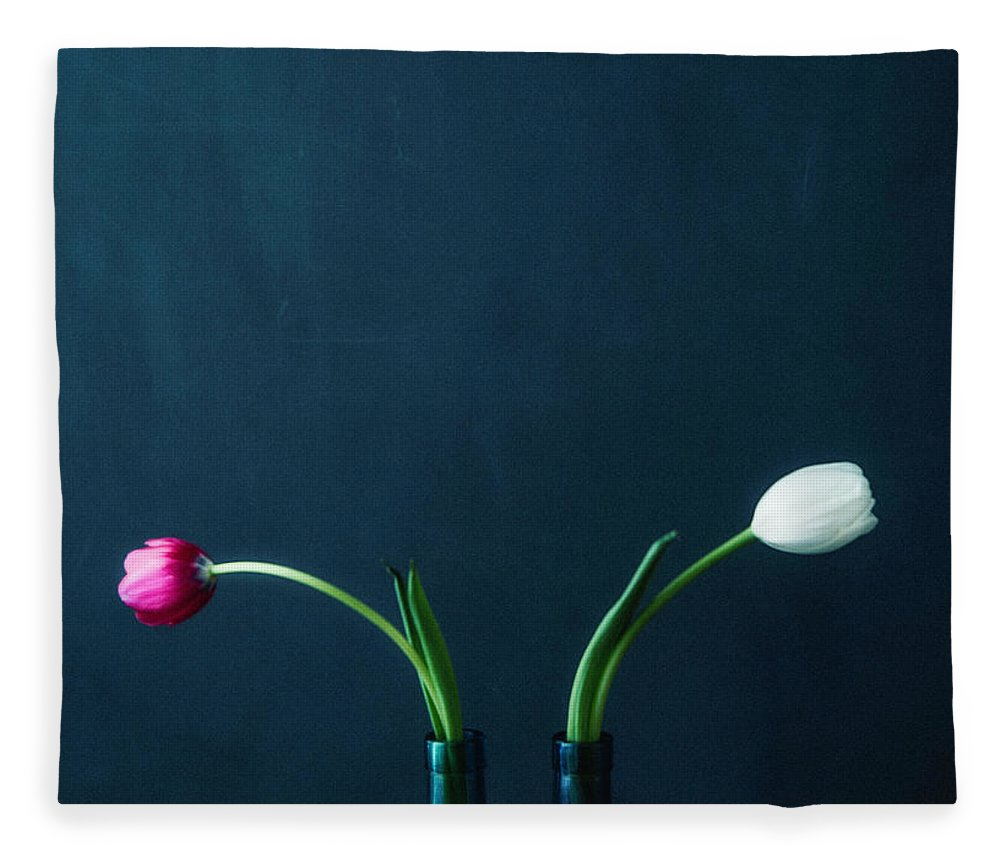 Mother's Day Fleece Blanket featuring the photograph Tulip Still Life For Mothers Day by Catlane