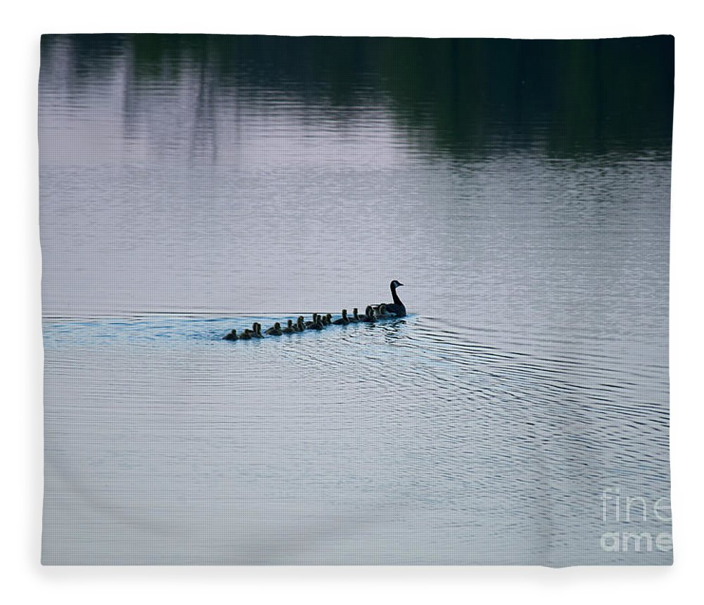 Geese Fleece Blanket featuring the photograph 18 At Dusk by David Arment
