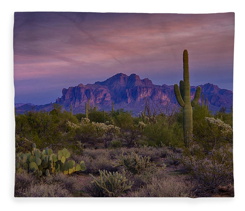 Sunset Fleece Blanket featuring the photograph A Beautiful Desert Evening by Saija Lehtonen