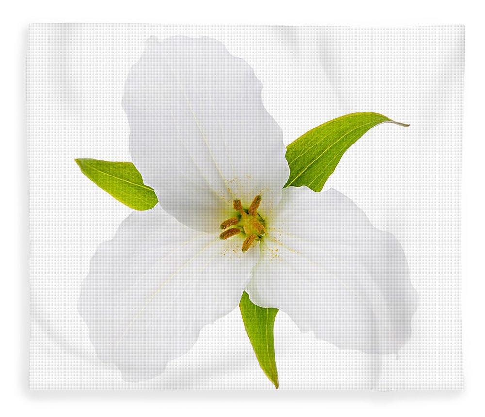 White Trillium Flower Fleece Blanket For Sale By Elena Elisseeva