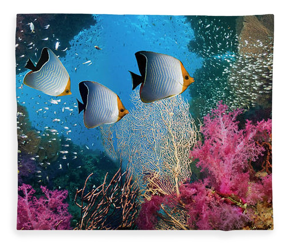 Tranquility Fleece Blanket featuring the photograph Coral Reef Scenery by Georgette Douwma