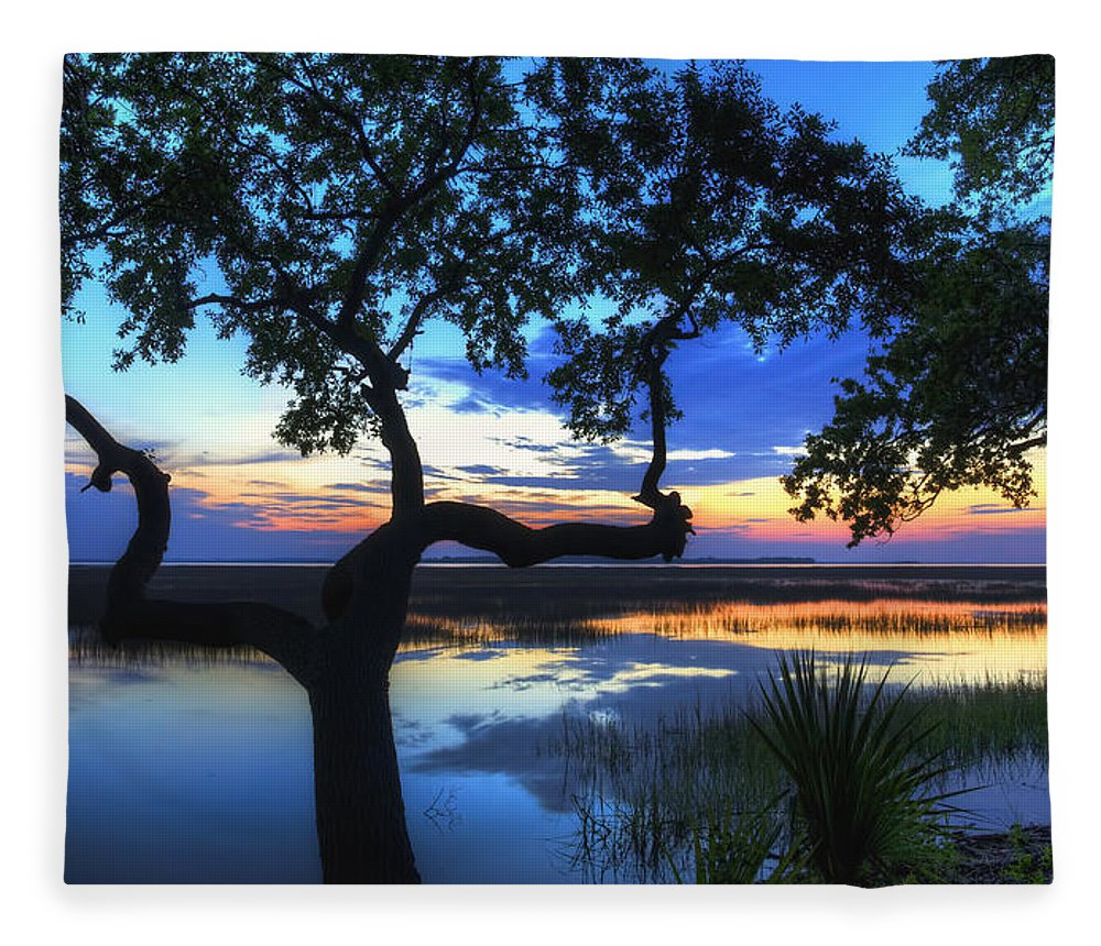 April Fleece Blanket featuring the digital art April Morning by Phill Doherty