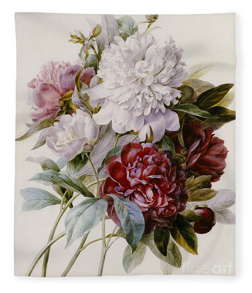 A Bouquet Of Red Pink And White Peonies Fleece Blanket For Sale By