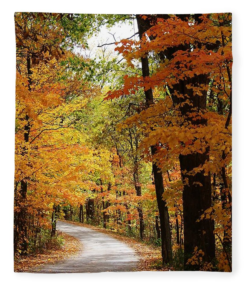 Woodland Fleece Blanket featuring the photograph A Drive Through The Woods by Bruce Bley