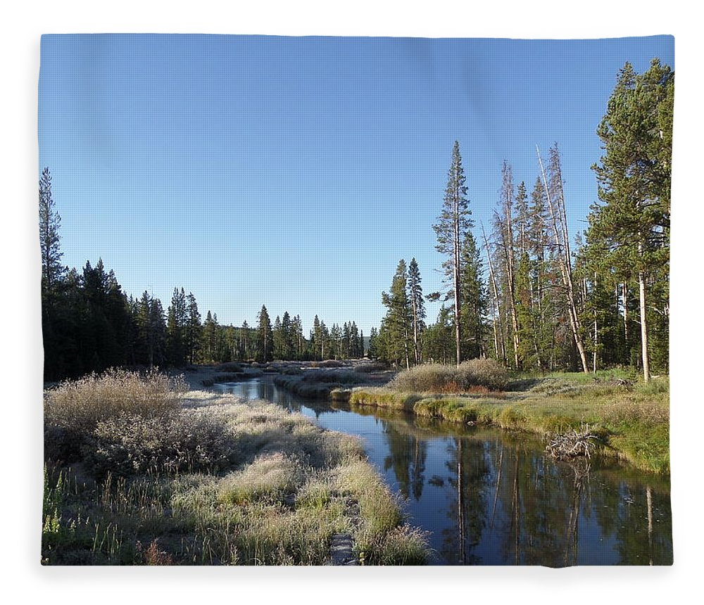 Blue Fleece Blanket featuring the photograph A Frosty Morning Along Obsidian Creek by Frank Madia