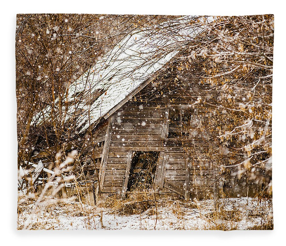 Barns Fleece Blanket featuring the photograph A Winter Shed by Edward Peterson