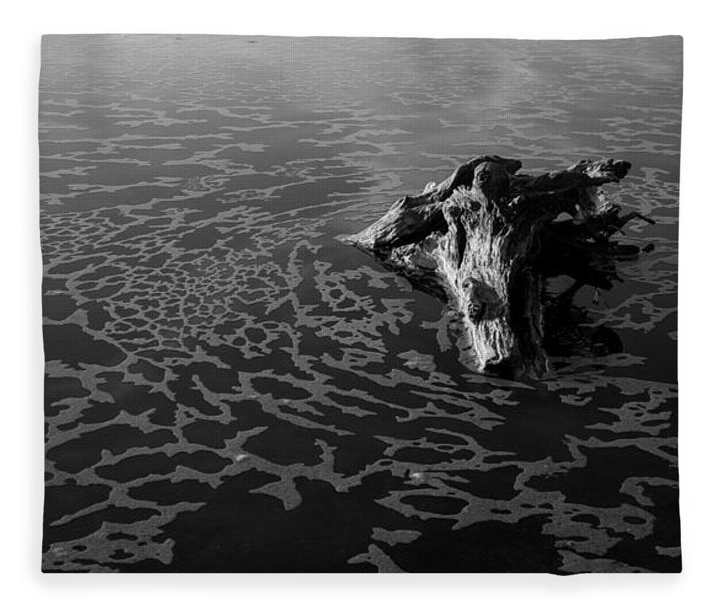 Driftwood Fleece Blanket featuring the photograph Adrift by Alex Lapidus