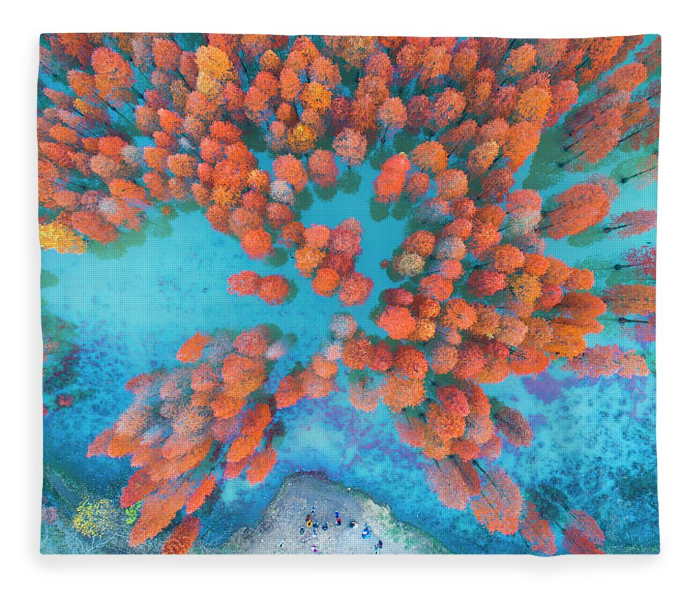 Tranquility Fleece Blanket featuring the photograph Aerial Drone View With Fir Tree Fall by Yaorusheng