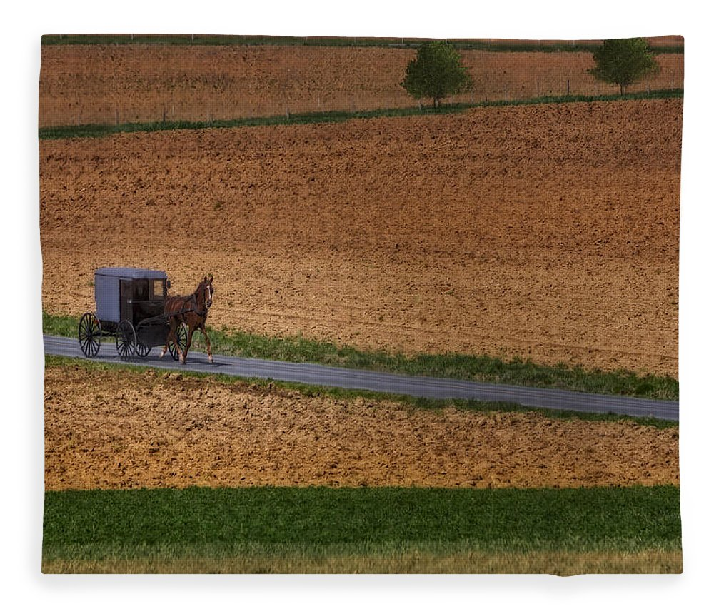 Amish Fleece Blanket featuring the photograph Amish Country Lancaster Pennsylvania by Susan Candelario