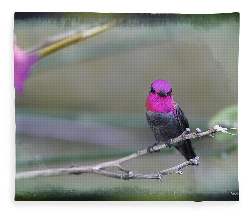 Hummingbird Fleece Blanket featuring the photograph Anna's Hummingbird - Male by Angela Stanton