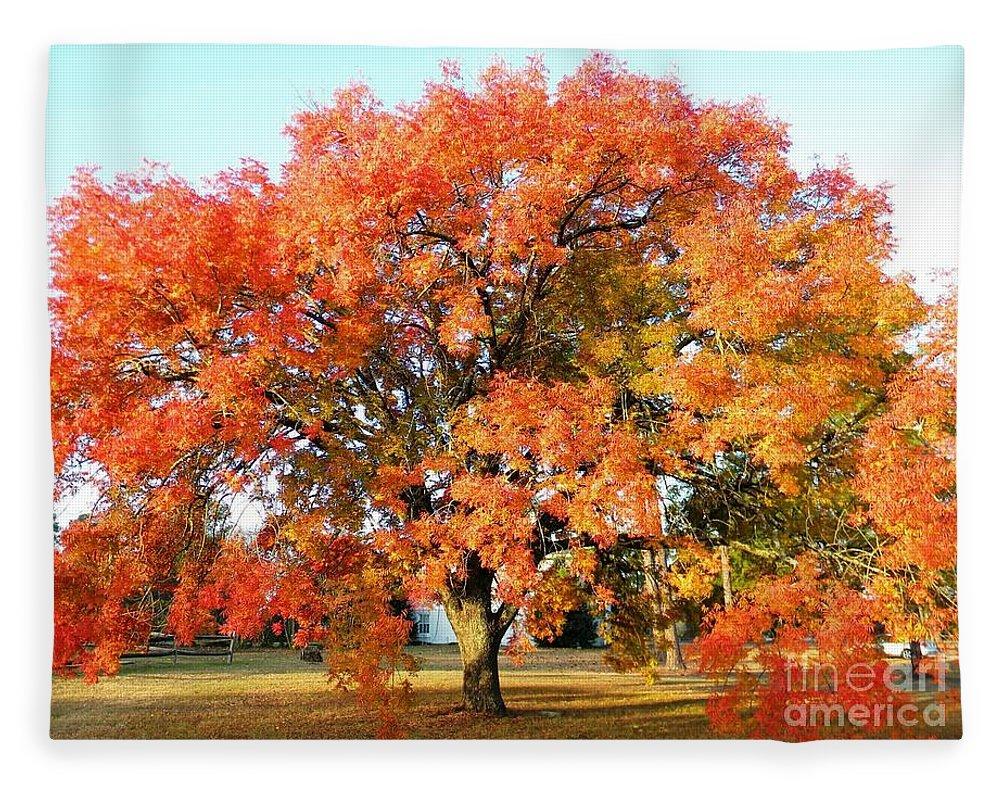 Postcard Fleece Blanket featuring the digital art Autumn Orange by Matthew Seufer