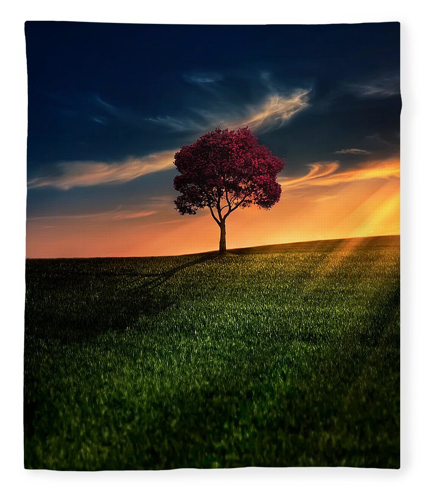 Agriculture Fleece Blanket featuring the photograph Awesome Solitude by Bess Hamiti