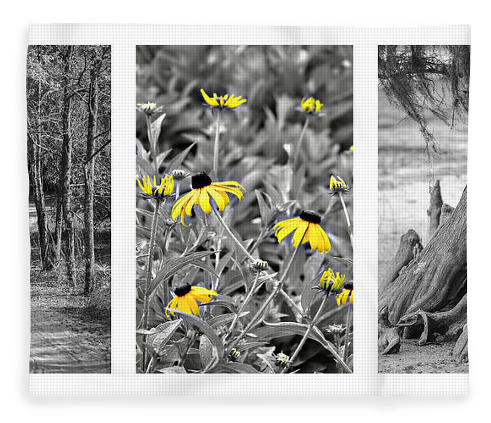 Triptych Fleece Blanket featuring the photograph Backwoods Escape Triptych by Carolyn Marshall