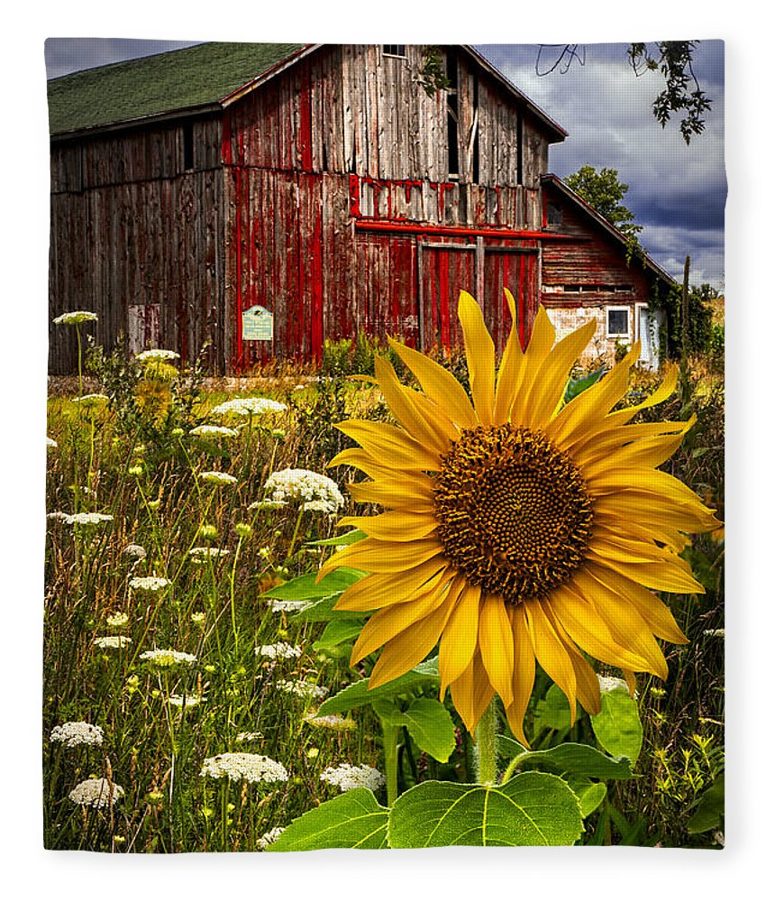 Barn Fleece Blanket featuring the photograph Barn Meadow Flowers by Debra and Dave Vanderlaan