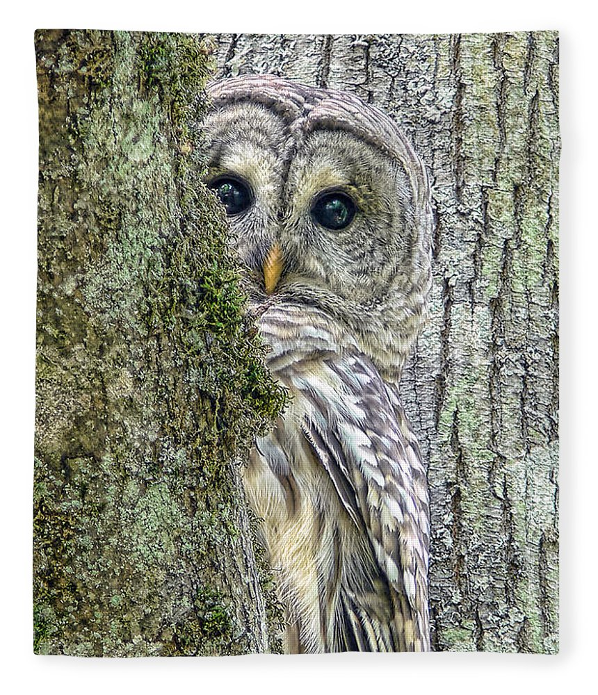 Owl Fleece Blanket featuring the photograph Barred Owl Peek A Boo by Jennie Marie Schell