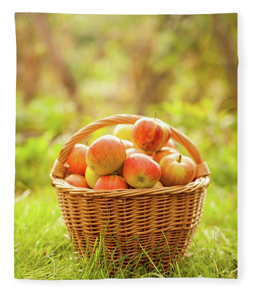 Grass Fleece Blanket featuring the photograph Basket With Apples by Tatyana Tomsickova Photography