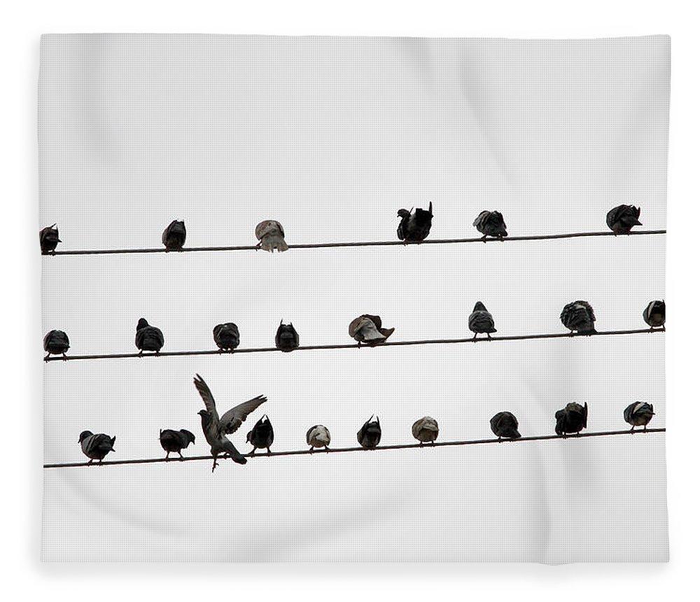 Amazon Rainforest Fleece Blanket featuring the photograph Birds Pattern by Ricardo Lima