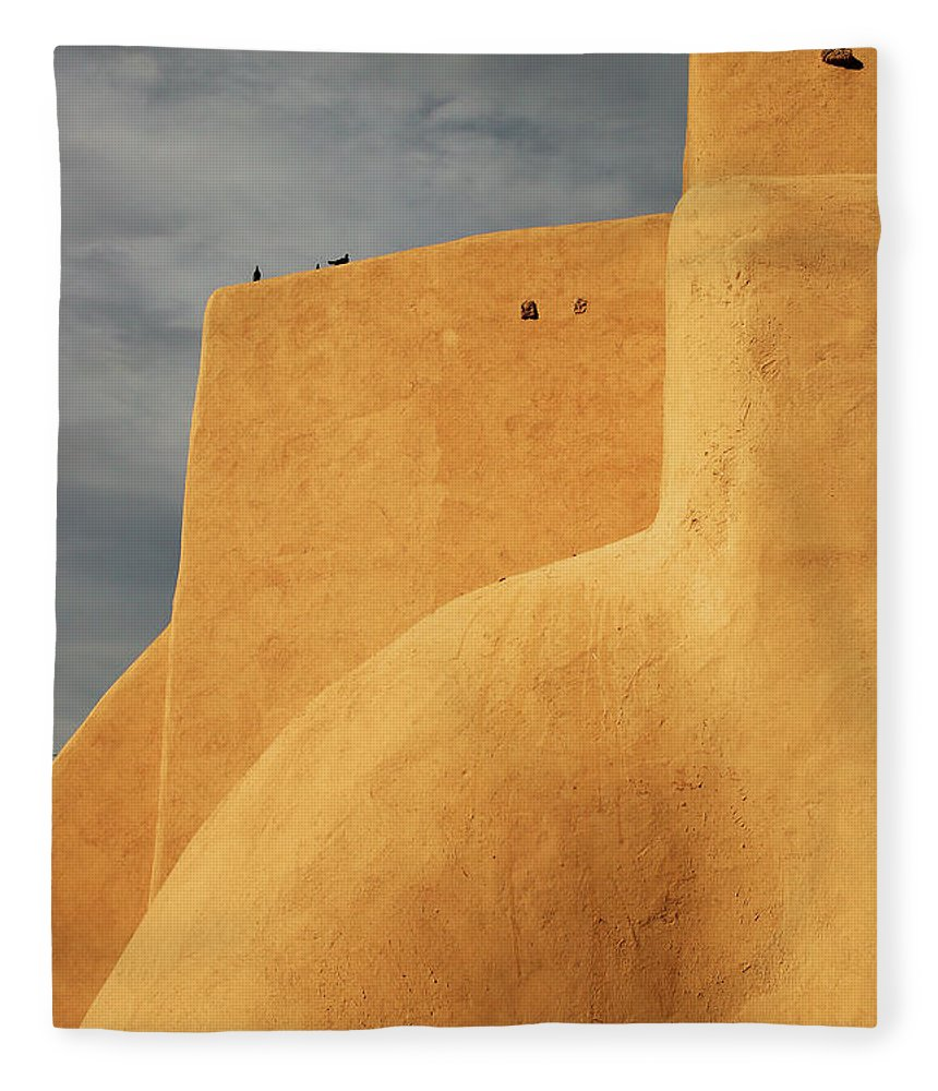 Built Structure Fleece Blanket featuring the photograph Birds Perched On A Yellow Building by Win-initiative