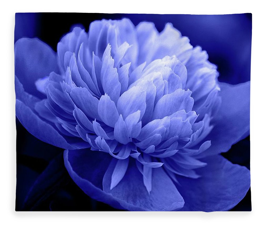 Flowers Fleece Blanket featuring the photograph Blue Peony by Sandy Keeton