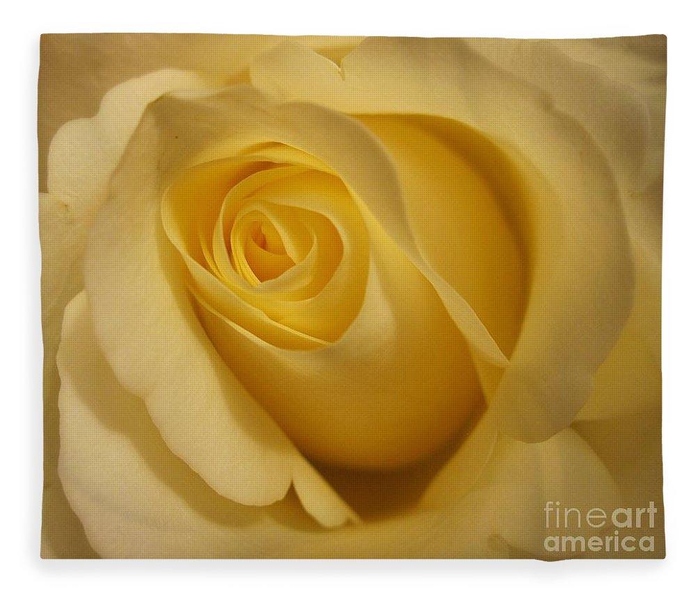 Floral Fleece Blanket featuring the photograph Blushing Cream Rose 3 by Tara Shalton
