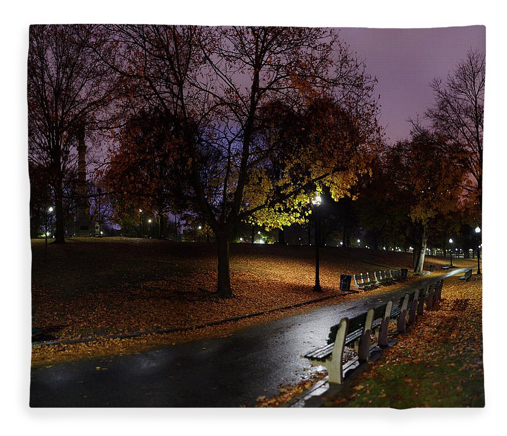 Tranquility Fleece Blanket featuring the photograph Boston Common Park by By Yuri Kriventsov