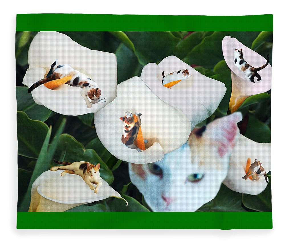 Cat Fleece Blanket featuring the digital art Cala In Callas by Lisa Yount