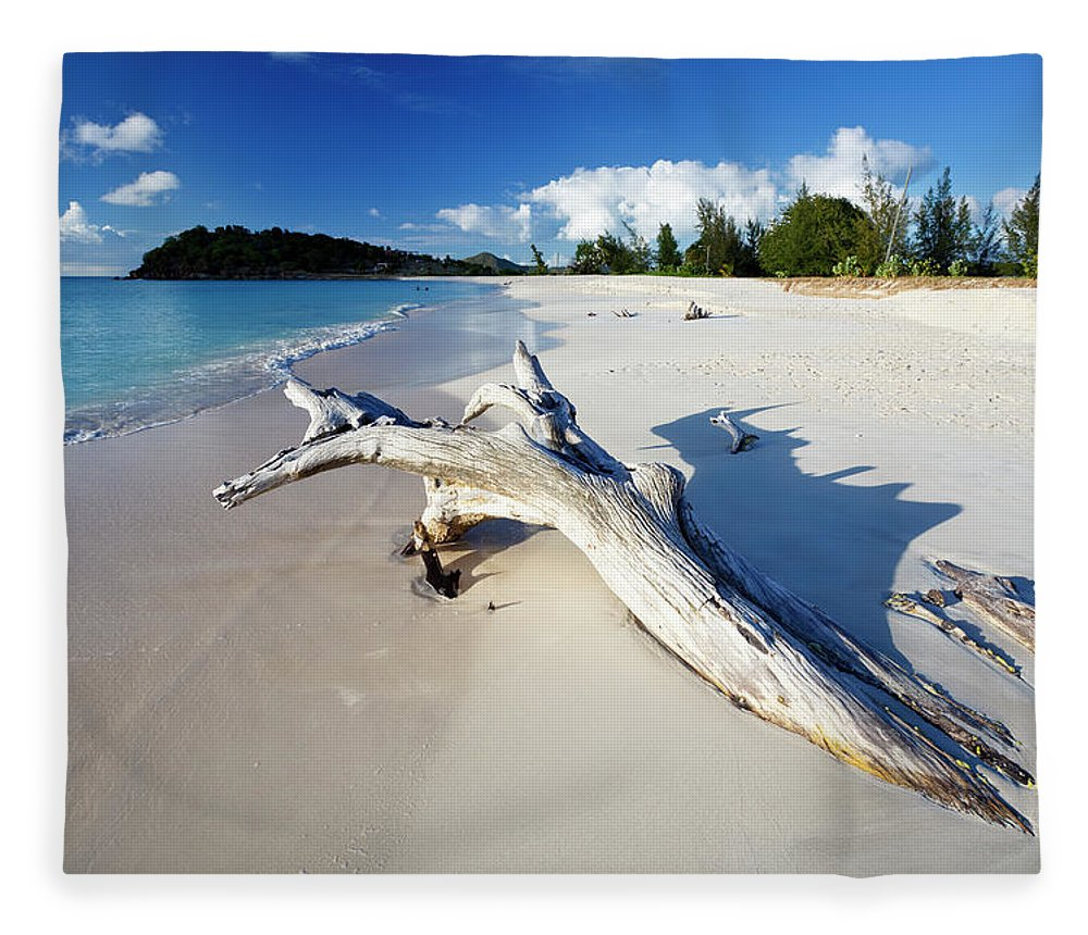 Water's Edge Fleece Blanket featuring the photograph Caribbean Beach With Driftwood by Michaelutech
