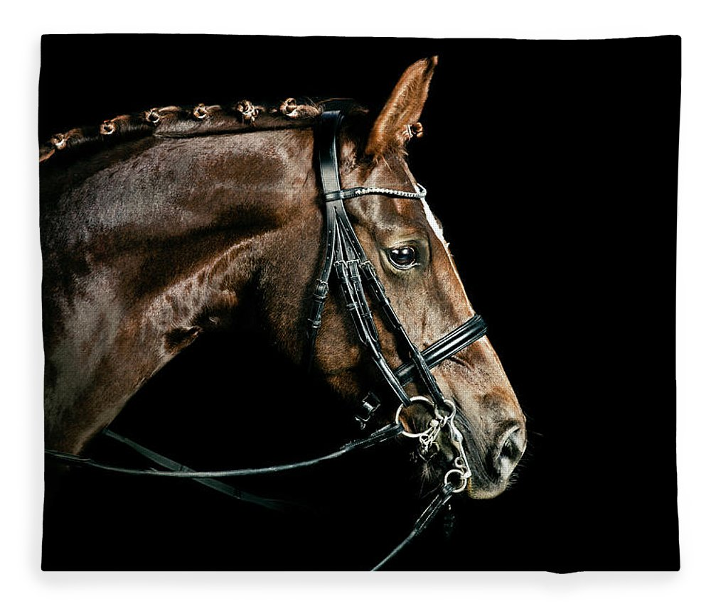 Horse Fleece Blanket featuring the photograph Chestnut Dressage Horse Groomed For A by Anja Hild