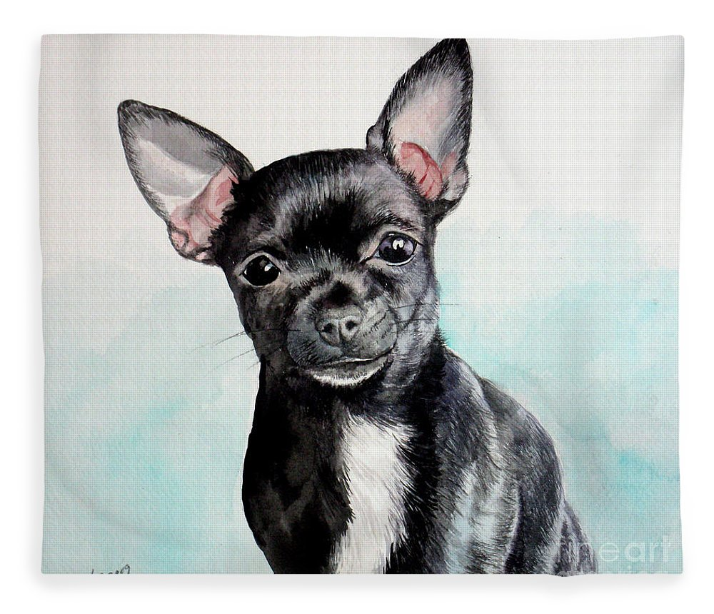 Dog Fleece Blanket featuring the painting Chihuahua Black by Christopher Shellhammer