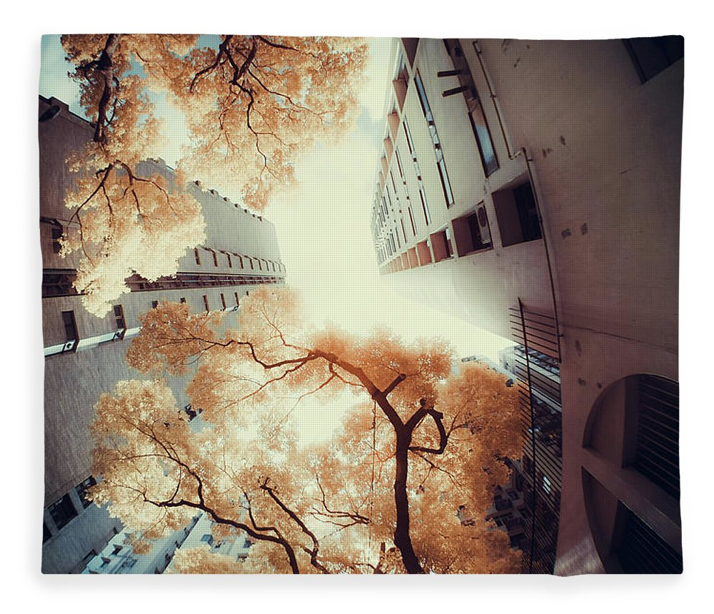 Tranquility Fleece Blanket featuring the photograph City In Harmony With Nature by D3sign
