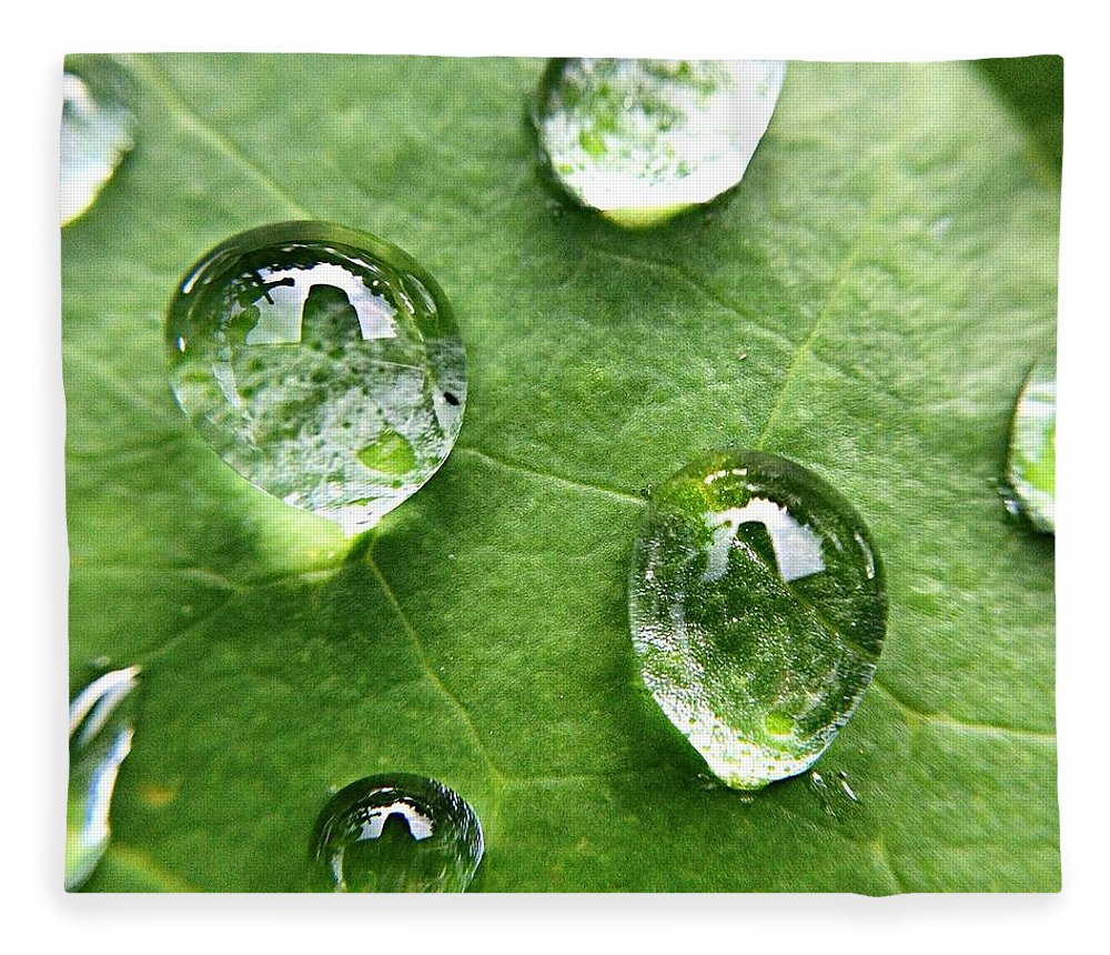 Douglasville Fleece Blanket featuring the photograph Close-up Of Water Drops On Leaf by Brian Harrison / Eyeem