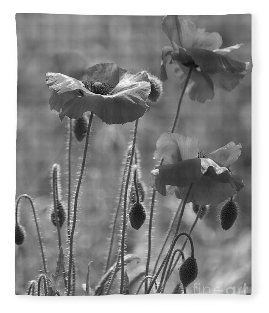 Poppies Fleece Blanket featuring the photograph Colour Blind Poppies 1 by Carol Lynch