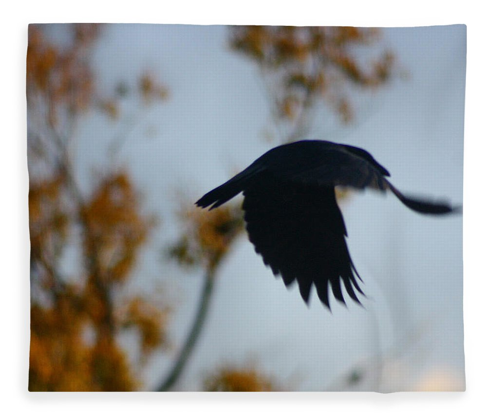 Blackbird Art Fleece Blanket featuring the photograph Crow In Flight 4 by Gothicrow Images